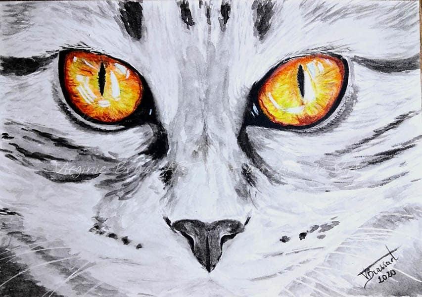 Peinture à l'aquarelle d'un regard orange de chat gris tigré en gros plan réalisé par l'artiste peintre Virginie Brassart
