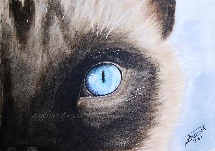 Peinture à l'aquarelle d'une moitié de face avec un oeil bleu de chat siamois réalisé par l'artiste peintre Virginie Brassart
