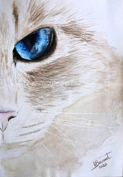 Peinture à l'aquarelle d'une moitié de face avec un oeil bleu de chat blanc réalisé par l'artiste peintre Virginie Brassart