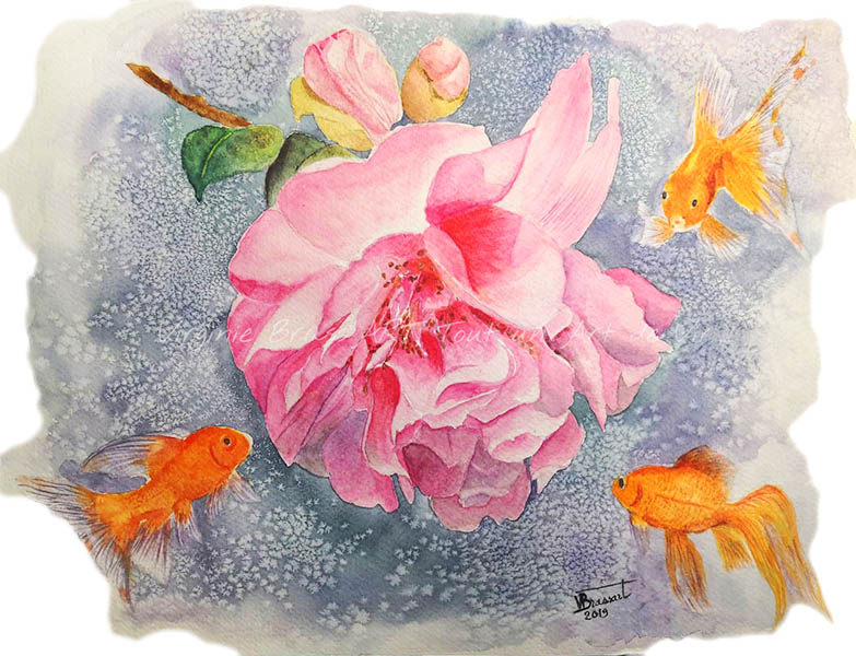 Peinture à l'aquarelle d'une fleur de camélia rose entourée par trois poissons rouges oranges curieux sur fond bleu/mauve moucheté, création originale de l'artiste peintre Virginie Brassart