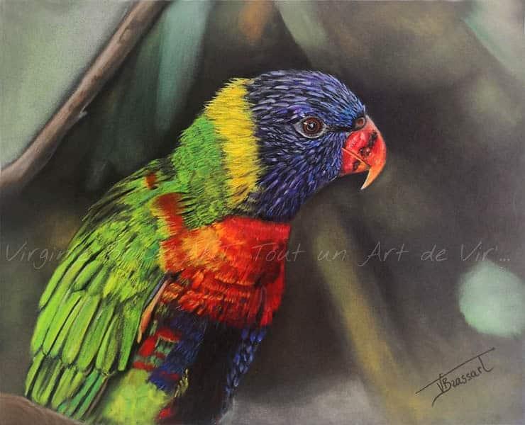 Dessin aux pastels secs d'un perroquet rouge, vert, jaune et bleu sur fond de végétation floutée réalisé par l'artiste peintre et portraitiste animalière Virginie Brassart