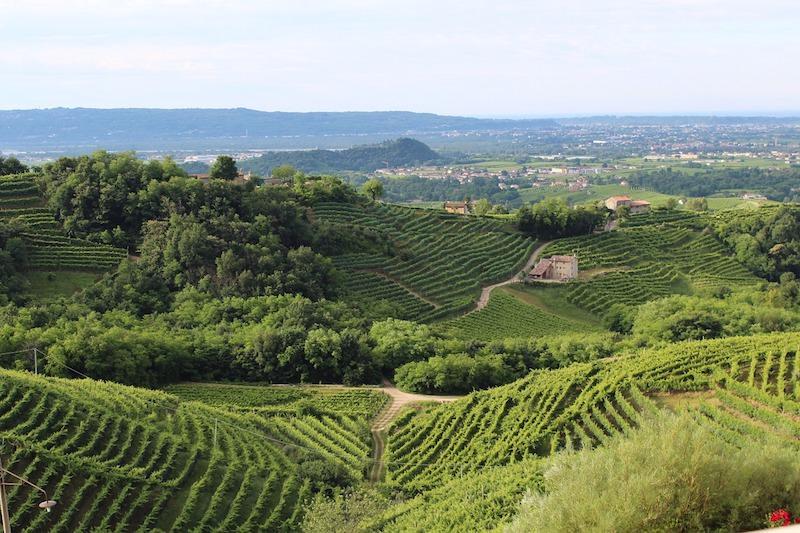 Cantine aperte Veneto