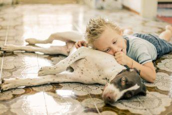 bambino sul pavimento con il cane