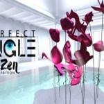 Perfect Angle VR – Zen edition (Steam VR)