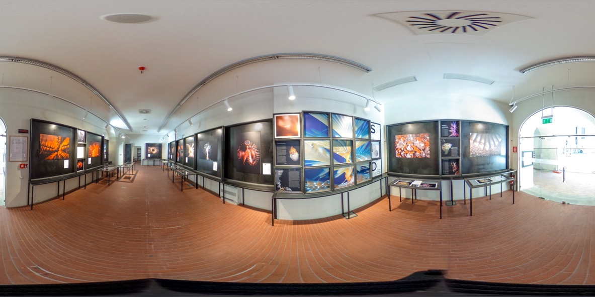 Applicazioni foto sferiche e tour virtuali a 360 gradi for Copie arredamento design
