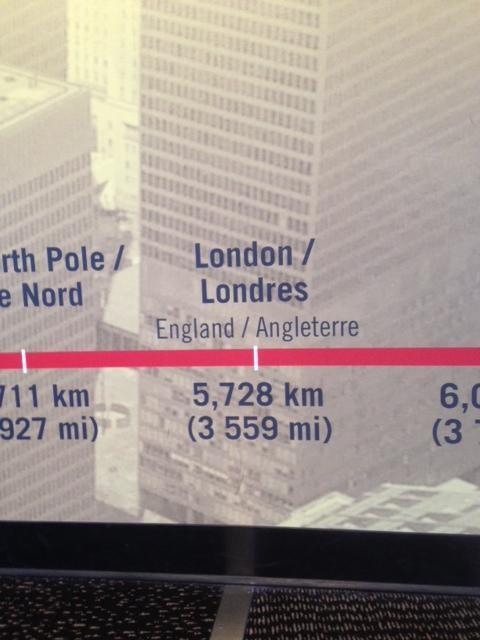 CN tower toronto tourist