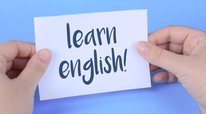Curso Mais Língua Premium: Conheça todos os detalhes desse curso