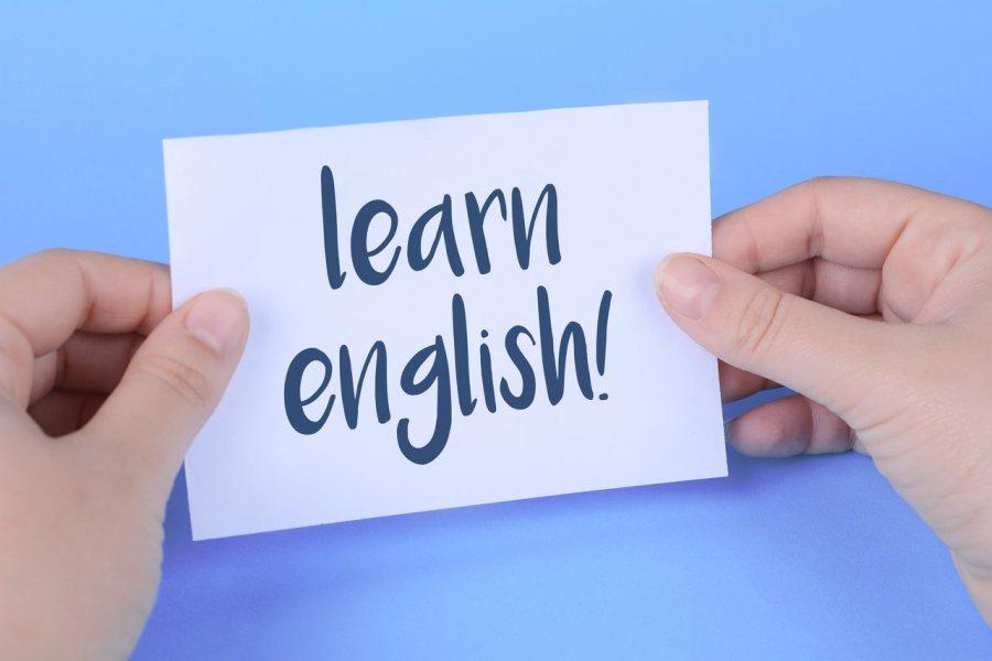 curso mais lingua premium