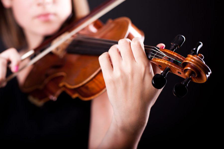 curso de violino spalla di base vale a pena