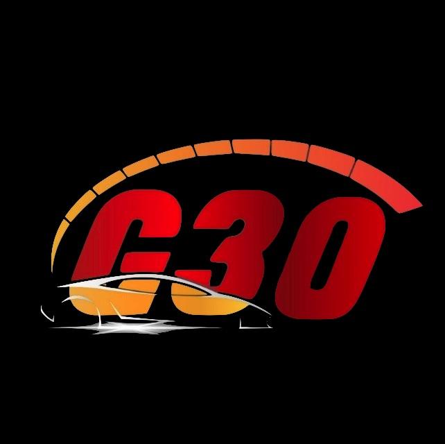 curso g30 marketing digital automotivo
