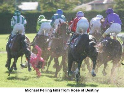 Image result for mick pelling jockey