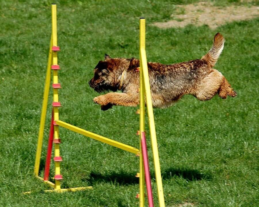 Overcoming Objections: Defeating Your Top Book-Writing Hurdles