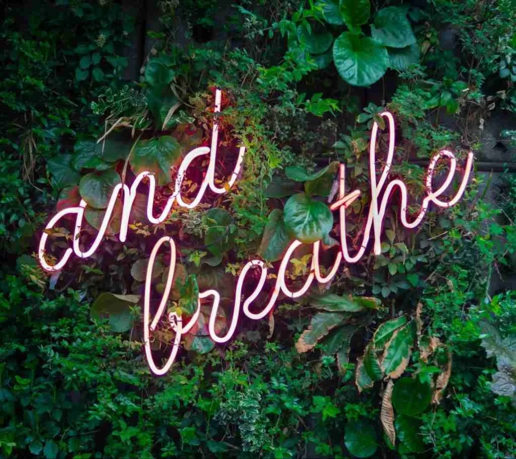 neon sign green wall