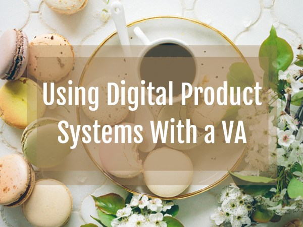 Using Digital Product Systems with a VA