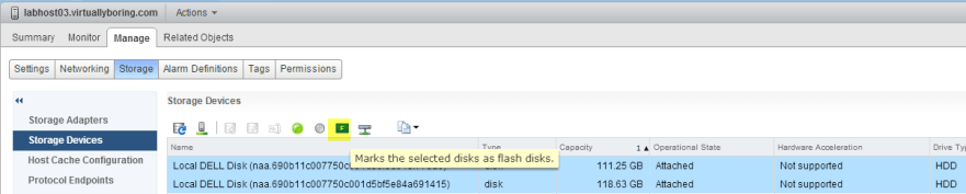 1-2 VSAN - Select flash disks and click flash button