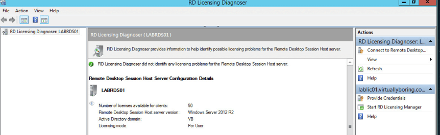RD Licensing 2 - Launch Diagnoser