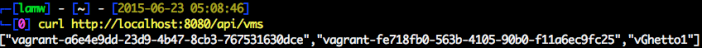 vmware-appcatalyst-vagrant-plugin-12