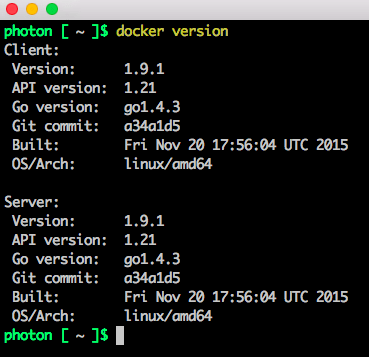 update-docker-client-to-19-in-appcatalyst-photonos-template-6