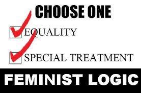 feministlogic