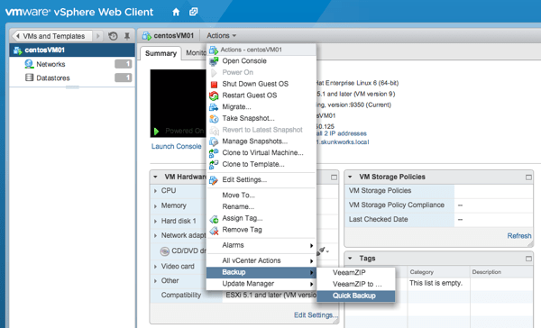Quick backup in vSphere Web Client