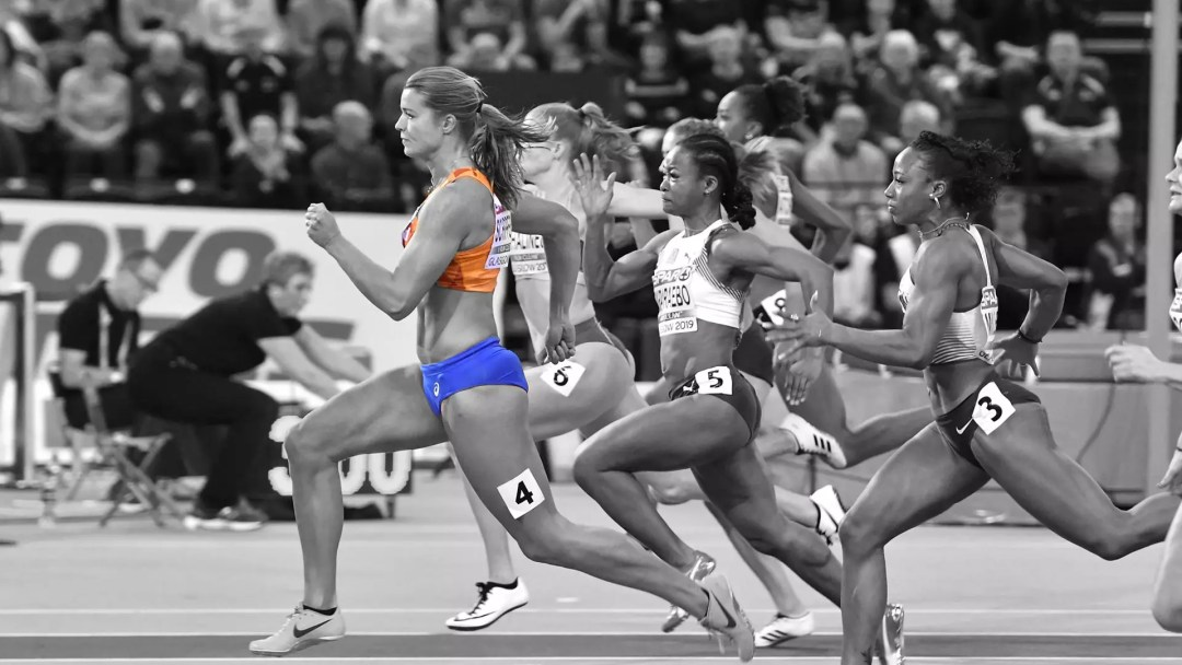 dafneschippers1