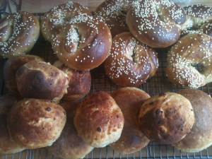 Montreal Bagels, Colombian cheese buns and Yankee cornmeal buns - international bunnery!