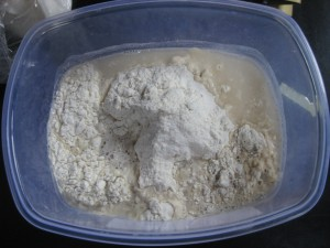 No Knead pizza dough ingredients - flour, water, salt, and yeast