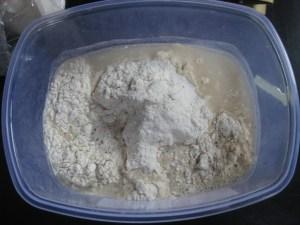 Sourdough focaccia dough.  Rye starter, flour, water.