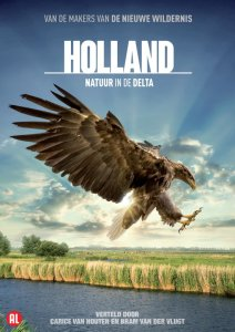 holland ijsvogel