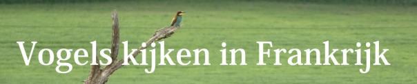 vogels kijken in frankrijk
