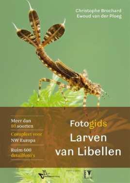 fotogids larven van libellen