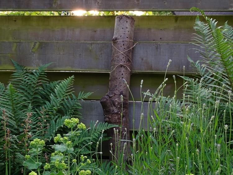 doet het zelf bijenhotel voor in de tuin 2