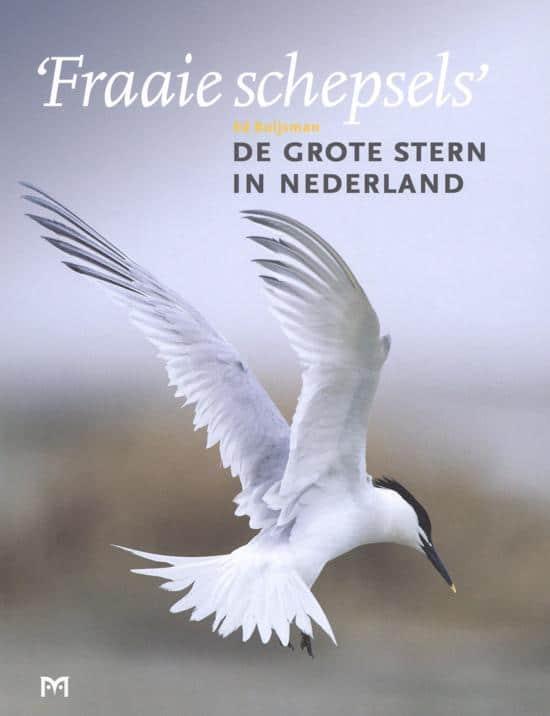 recensie Fraaie schepsels. De grote stern in Nederland Ed Buijsman