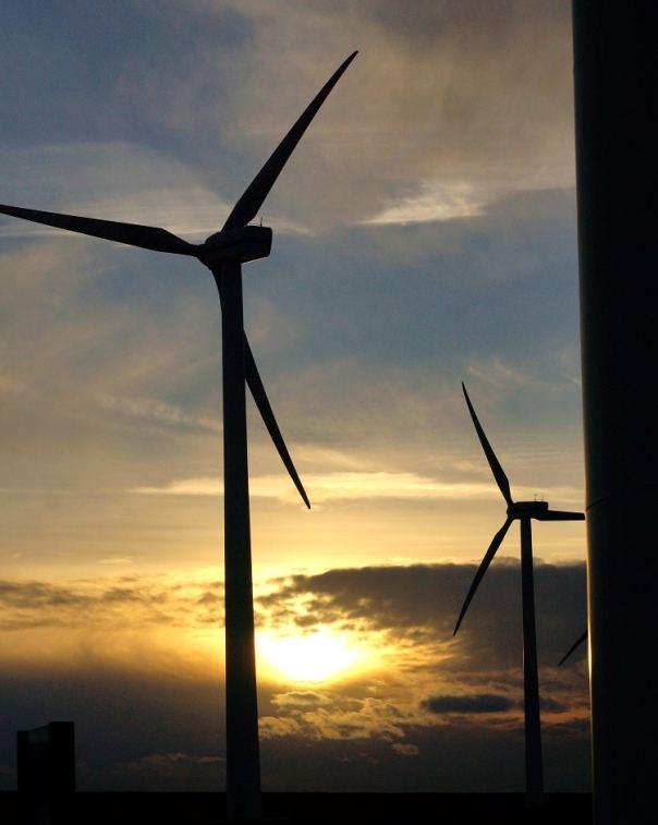 windmolens Goeree-Overflakkee