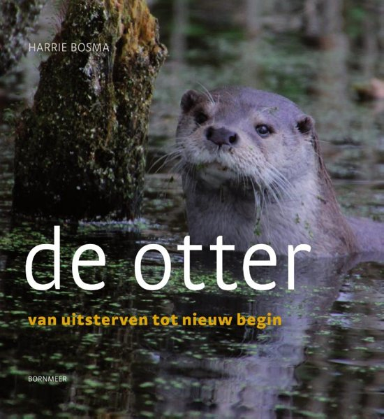 recensie de otter harrie bosma