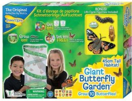 vlinderkweekset voor kinderen vlinders kijken