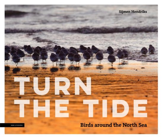 Turn the tide, birds around the North Sea