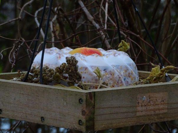 hoe bak je een vogeltaart