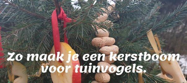 zo maak je een kerstboom voor tuinvogels