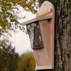 nestkast boomkruiper hoe lok ik een boomkruiper in de tuin