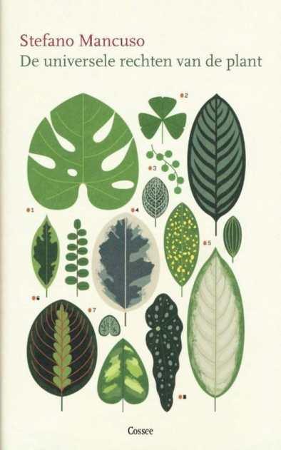 recensie De universele rechten van de plant stefano mancuso