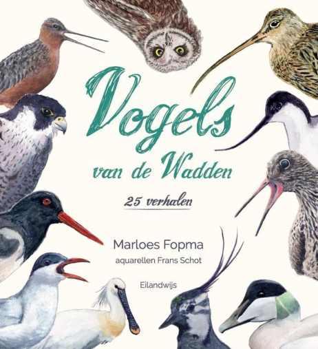 recensie vogels van de wadden marloes schot en frans schot