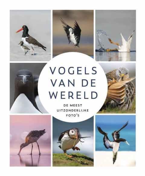 recensie vogels van de wereld Erik Ruiterman
