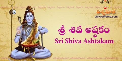 sri shiva ashtakam
