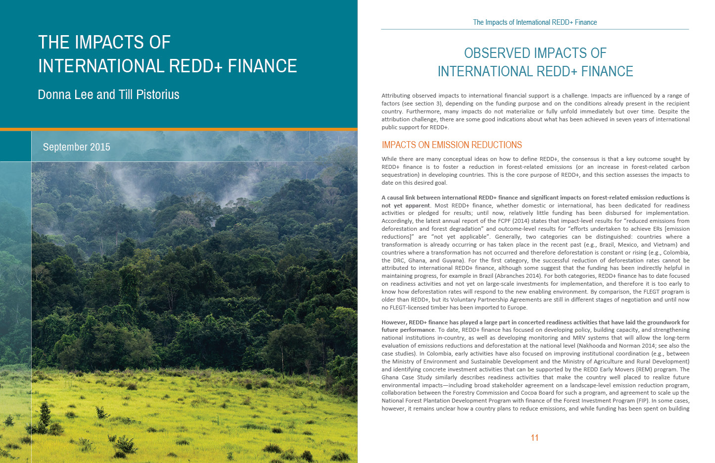 The impacts of international REDD finance