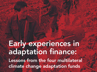 Early Experiences in Adaptation Finance