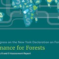 Finance for Forests