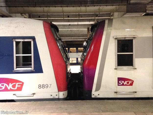 Deux trains Z8600 ou Z8800, l'un en livrée traditionnelle, l'autre en livrée «30 ans».