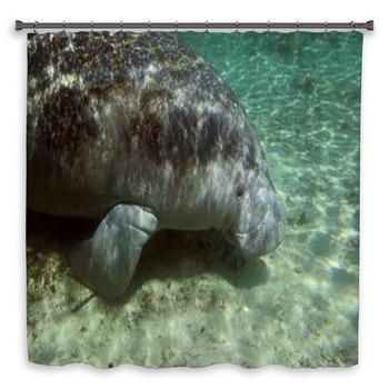 manatee sea cow cristal river custom size shower curtain