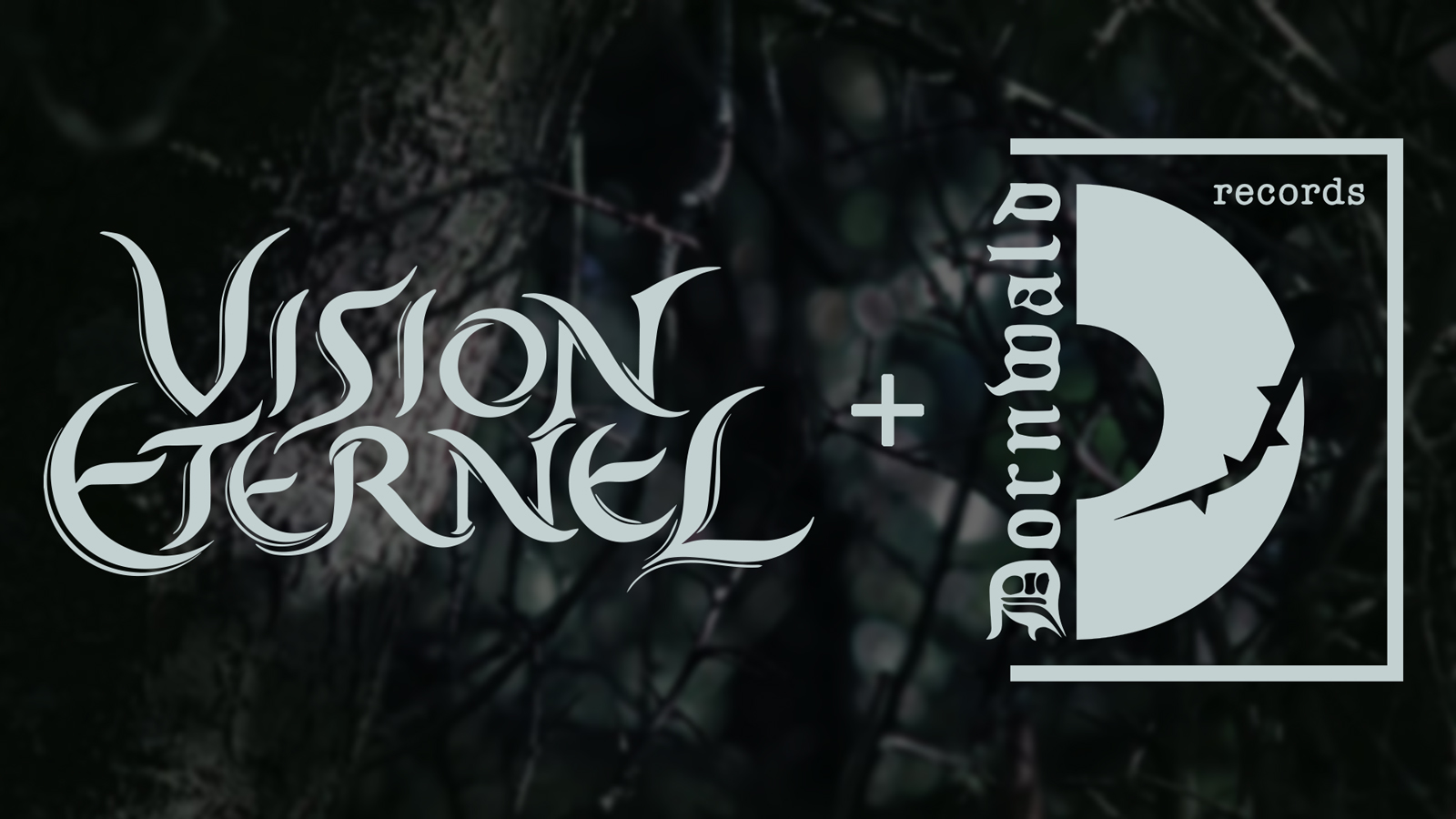 Vision Eternel To Collaborate With Dornwald Records